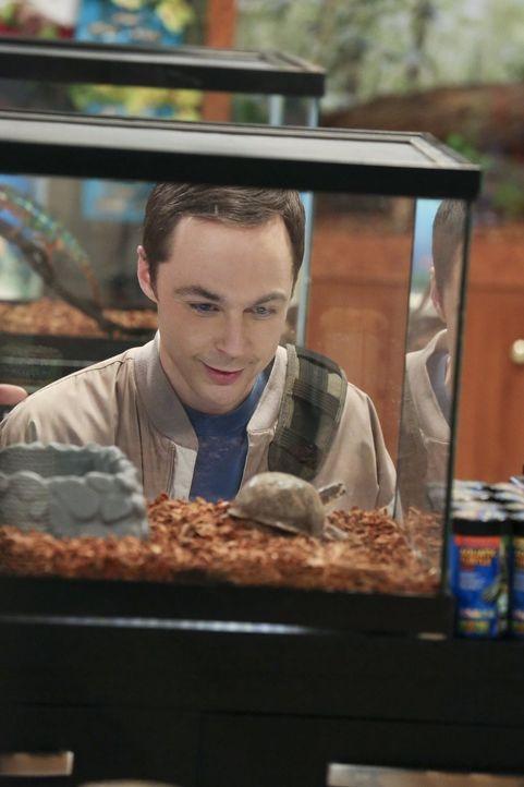 Sheldon (Jim Parsons) hat sich um eine Marsmission beworben - worüber Amy alles andere als begeistert ist ... - Bildquelle: Warner Bros. Television