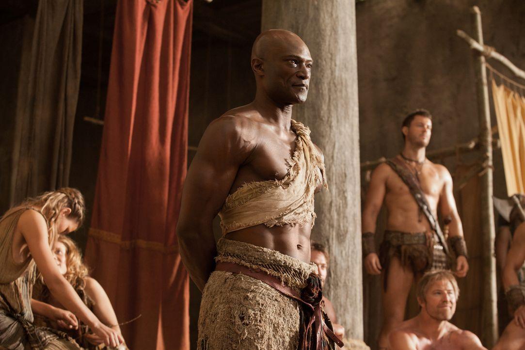 Bringt den aufständischen Sklaven bei, wie man im Kampf überlebt : Drago (Peter Mensah) ... - Bildquelle: 2011 Starz Entertainment, LLC. All rights reserved.