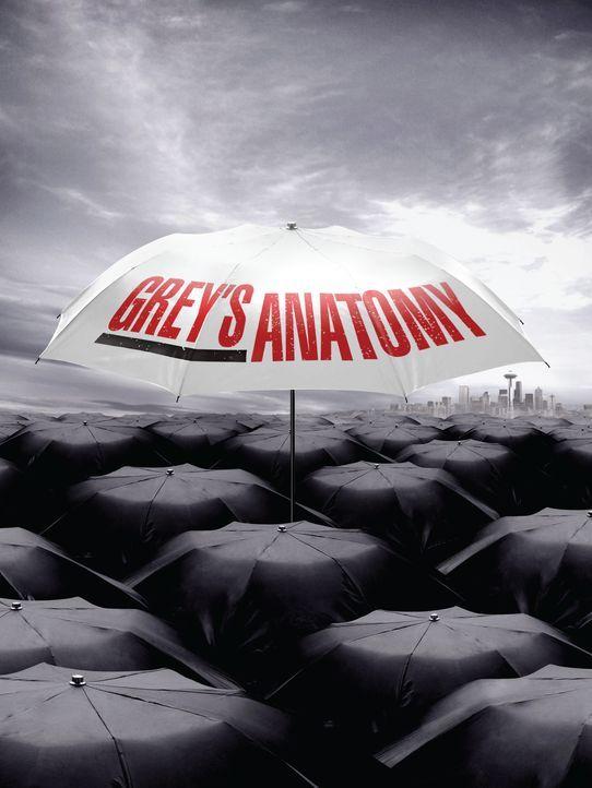 (6. Staffel) - Grey's Anatomy: Neues aus dem Seattle Grace Hospital ... - Bildquelle: Touchstone Television