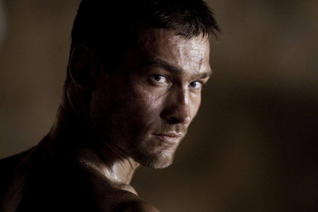 """Kaum im """"Ludus"""" angekommen, da kommt zur ersten Auseinandersetzung zwischen Spartakus (Andy Whitfield) und Crixus, dem besten Kämpfer der Gladiatore... - Bildquelle: 2010 Starz Entertainment, LLC"""
