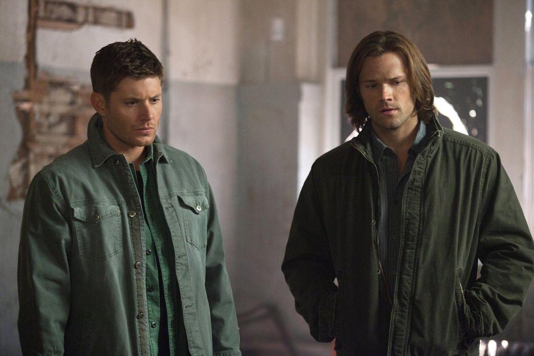 Um die Tore zur Hölle endlich für immer schließen zu können, brauchen Sam (Jared Padalecki, r.) und Dean (Jensen Ackles, l.) die Steintafeln, doch d... - Bildquelle: Warner Bros. Television