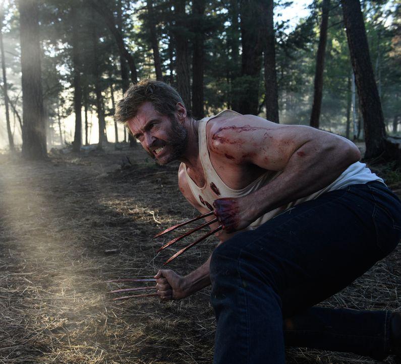 Logan (Hugh Jackman) - Bildquelle: Ben Rothstein 2017 Marvel. TM and   2017 Twentieth Century Fox Film Corporation. All rights reserved./Ben Rothstein