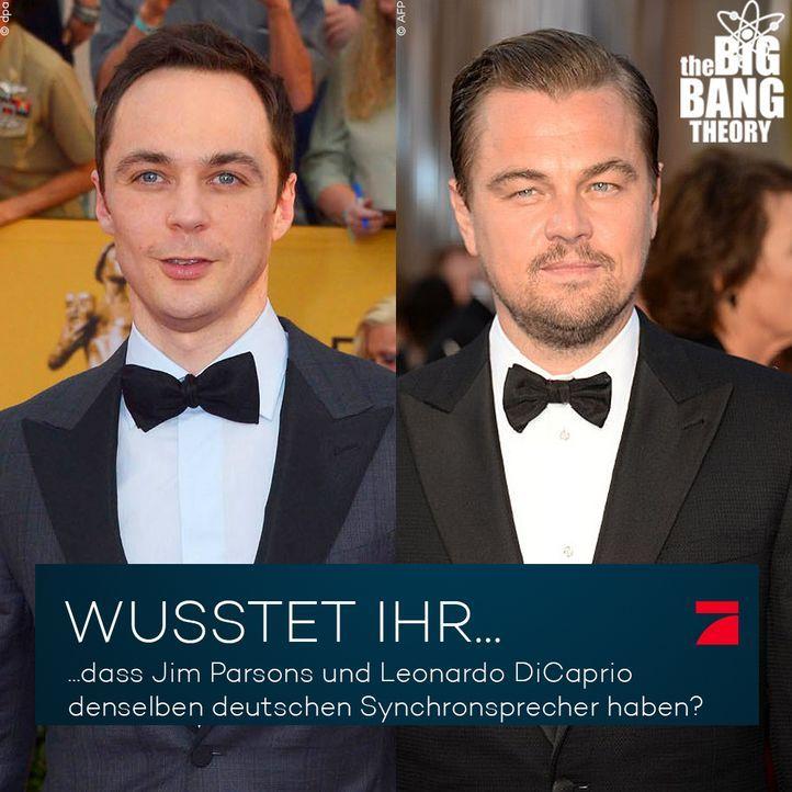 Big Bang Theory Trivia: Spricht da Leonardo Di Caprio? - Bildquelle: dpa, AFP