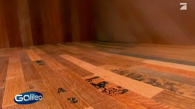 Fußboden Aus Alten Weinfässern ~ Galileo video fußboden aus weinfässer prosieben
