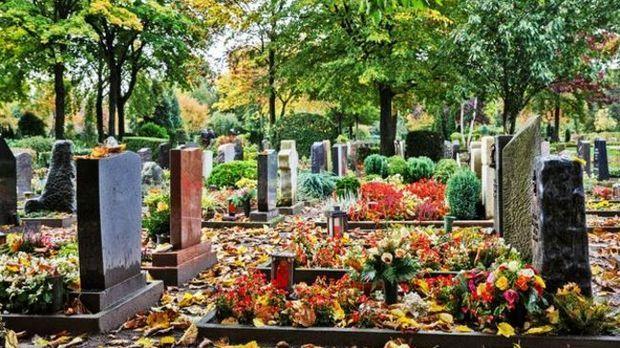 Grabbepflanzung Für Alle Jahreszeiten | SAT.1 Ratgeber