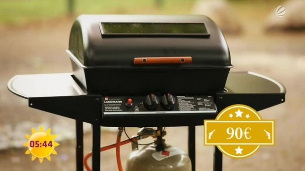 Rothmann Elektrogrill Test : Grill kaufen: das sollten sie beachten sat.1 ratgeber