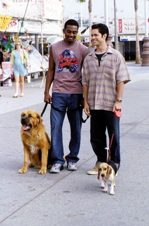 Da Clay (Daniel Pino, hinten r.) immer noch solo ist, ist Jeremiah (Bill Bellamy, hinten l.) der Meinung, dass sich da schleunigst etwas ändern mus... - Bildquelle: Paramount Television