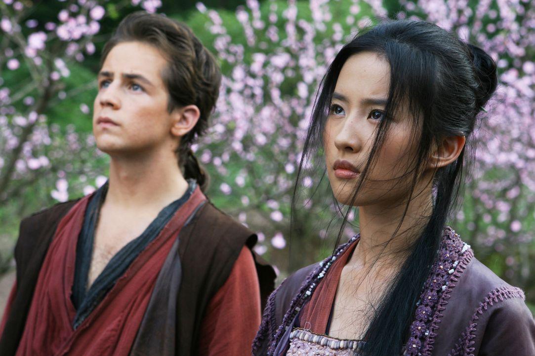 Zwischen Jason (Michael Angarano, l.) und der schönen Sperrling (Yifei Liu, r.) entsteht eine ganz besondere Beziehung, aber hat sie eine Chance in... - Bildquelle: 2008 J&J Project LLC. ALL RIGHTS RESERVED.