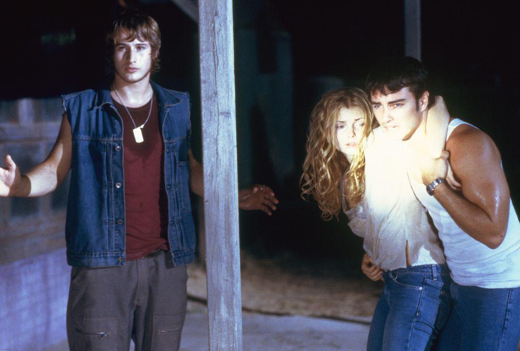 Um die bereits infizierte Megan (Izabella Miko, M.) zu retten, nehmen Sean (Kerr Smith, r.) und Nick (Brendan Fehr, l.) den Kampf gegen die Blutsaug... - Bildquelle: 2003 Sony Pictures Television International. All Rights Reserved.