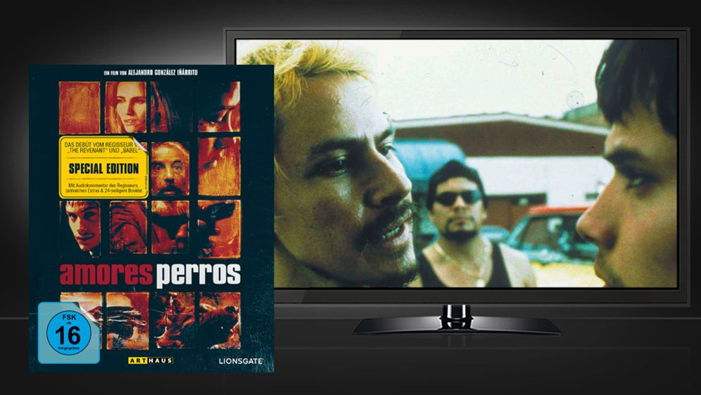Amores Perros (Blu-ray)