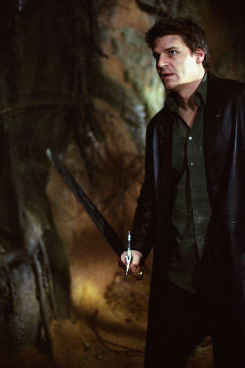 Angel (David Boreanaz) muss gegen ein Baum-Monster antreten. - Bildquelle: 20th Century Fox. All Rights Reserved.