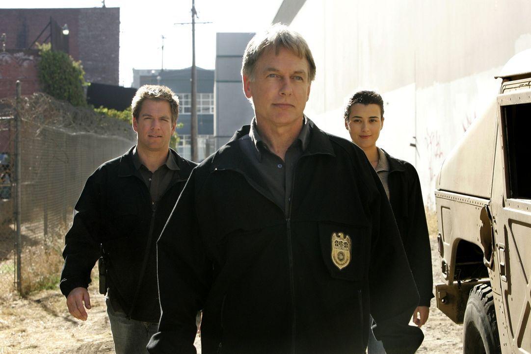 Gemeinsam arbeiten Gibbs (Mark Harmon, M.), Ziva (Cote de Pablo, r.) und Tony (Michael Weatherly, l.) an einem äußerst verzwickten Fall ... - Bildquelle: CBS Television