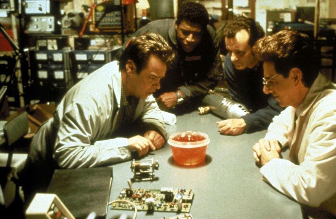 Unter der Stadt entdecken die Geisterjäger Dr. Egon Spengler (Harold Ramis, r.), Dr. Peter Venkman (Bill Murray, M. r.) und Dr. Raymond Stantz (Dan... - Bildquelle: 1989 Columbia Pictures Industries, Inc. All Rights Reserved.