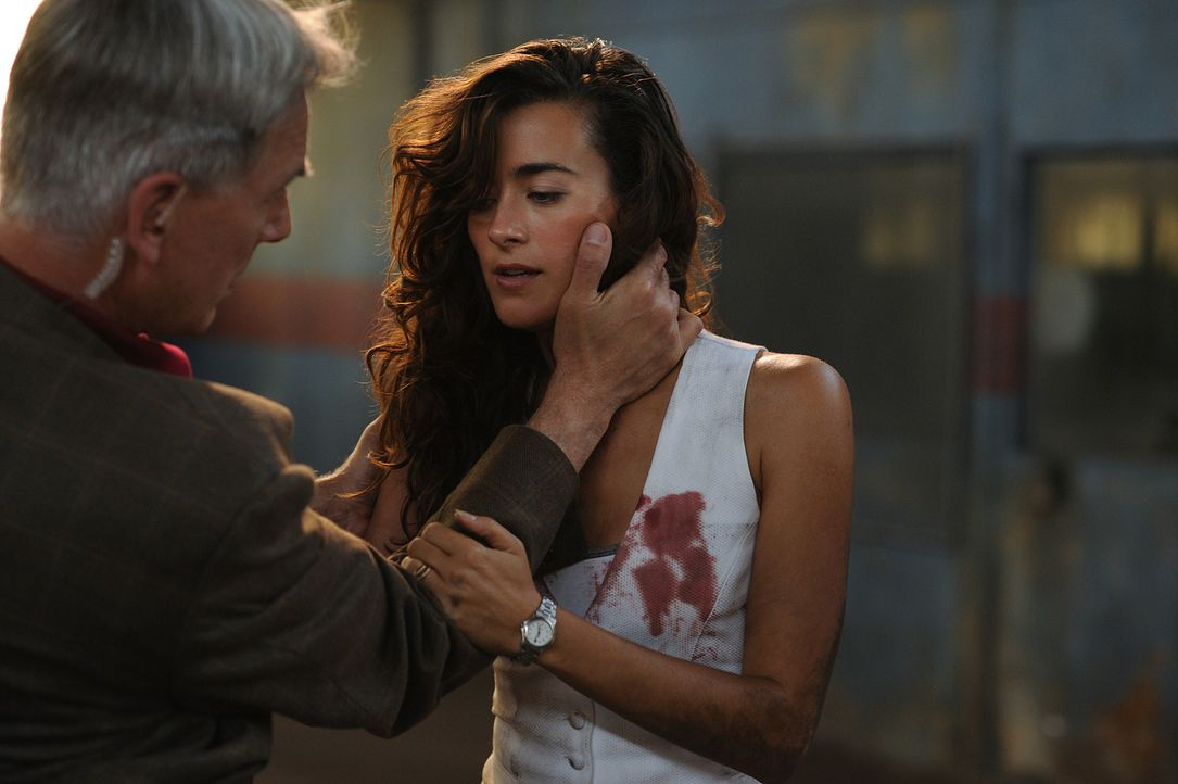 Ziva (Cote de Pablo, r.) gerät in Lebensgefahr, als sie undercover einen Serienkiller jagt, der untreue Ehefrauen ermordet: Gibbs (Mark Harom, l.) m... - Bildquelle: CBS Television