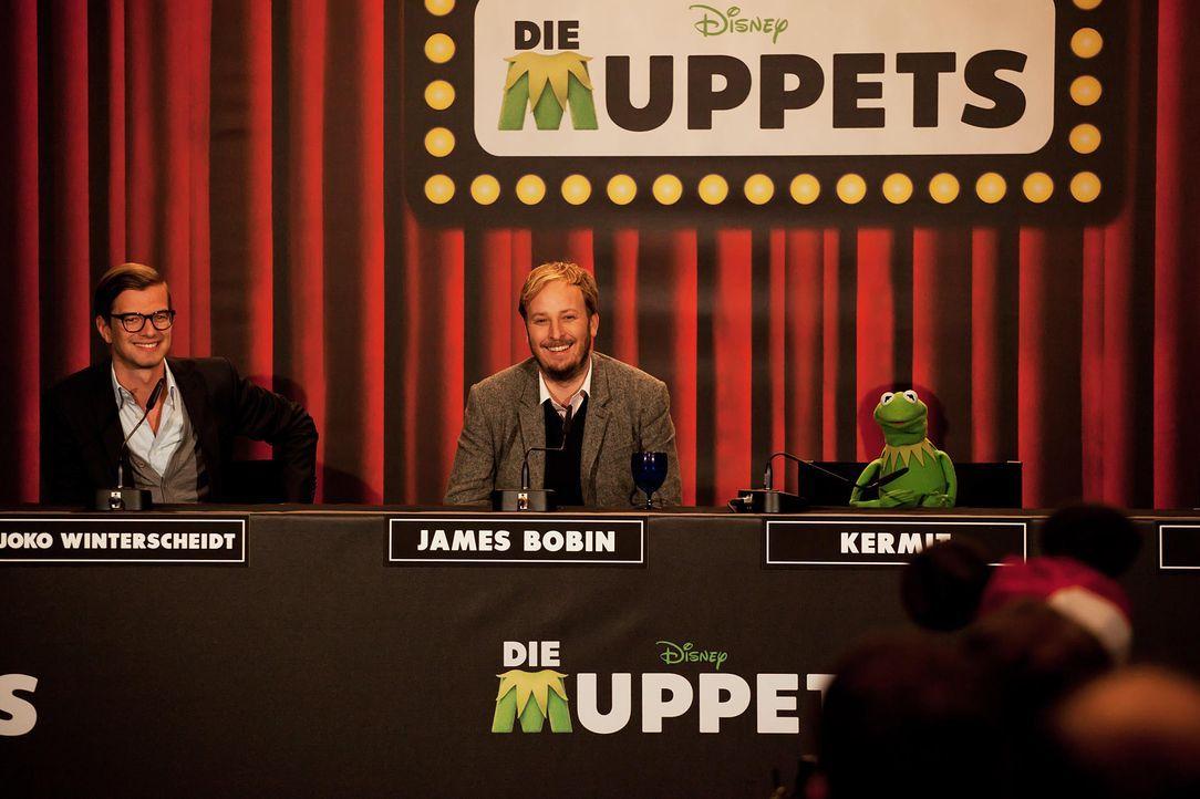 muppets-pressekonferenz-berlin-08-hanna-boussouar-walt-disney-companyjpg 1900 x 1266 - Bildquelle: Hanna Boussouar/Walt Disney Company
