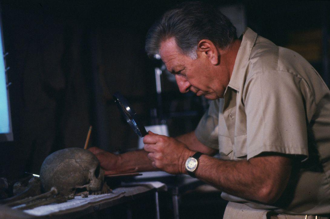 Gerichtsmediziner Quincy (Jack Klugman) ist nach Acapulco gereist, um einen alten Knochenfund zu untersuchen. Stammen die Gebeine wirklich von einem... - Bildquelle: Universal Pictures