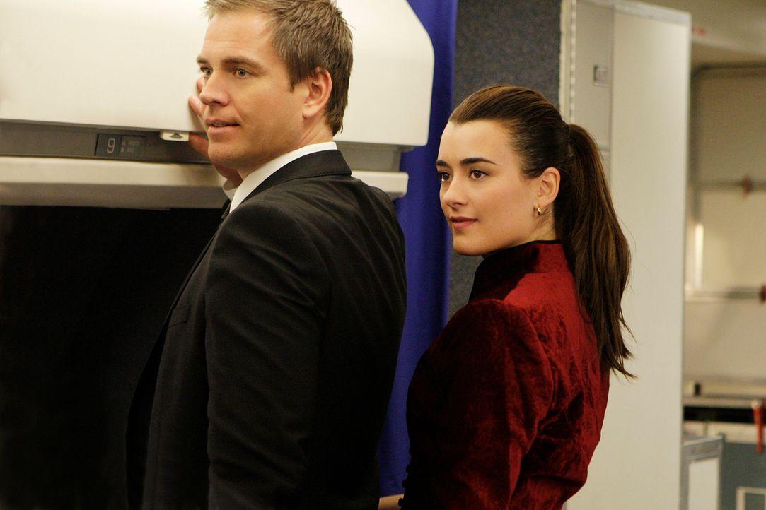 Ein neuer Auftrag: Tony (Michael Weatherly, l.) und Ziva (Cote de Pablo, r.) sollen die Hauptbelastungszeugin in einem bevorstehenden Betrugsprozess... - Bildquelle: CBS Television