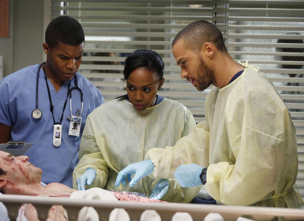 Das Krankenhaus wird von einigen Bikern, die in einen schweren Unfall verwickelt waren, überschwemmt. Shane (Gaius Charles, l.), Stephanie (Jerrika... - Bildquelle: ABC Studios