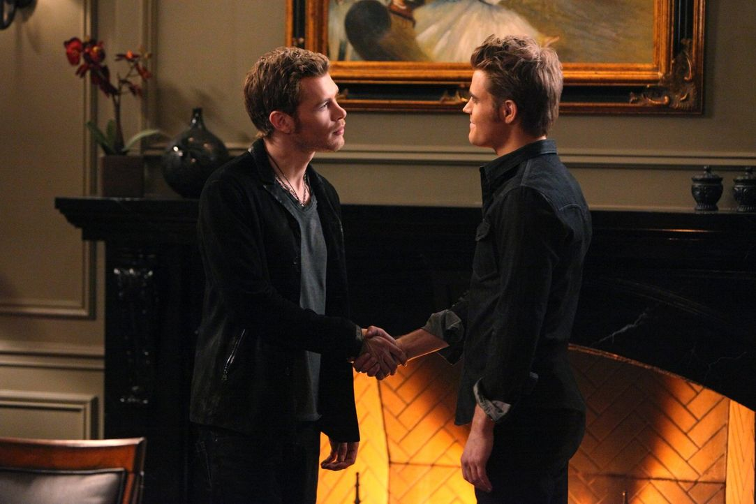 Kann Stefan Salvatore (Paul Wesley, r.) Klaus (Joseph Morgan, l.) wirklich trauen? - Bildquelle: Warner Brothers