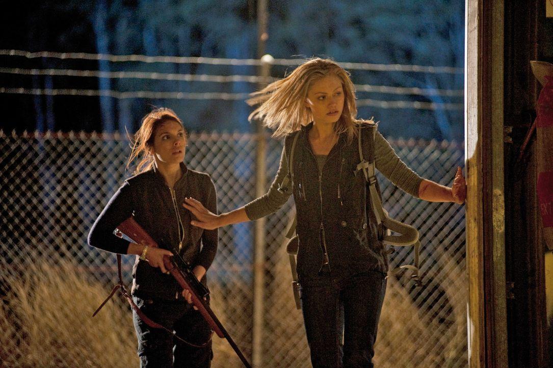Ellie (Caitlin Stasey, l.) und Fiona (Phoebe Tonkin, r.) und die anderen Freunde beschließen, um ihre Freiheit zu kämpfen. Auch wenn es ihr Leben... - Bildquelle: Splendid Film