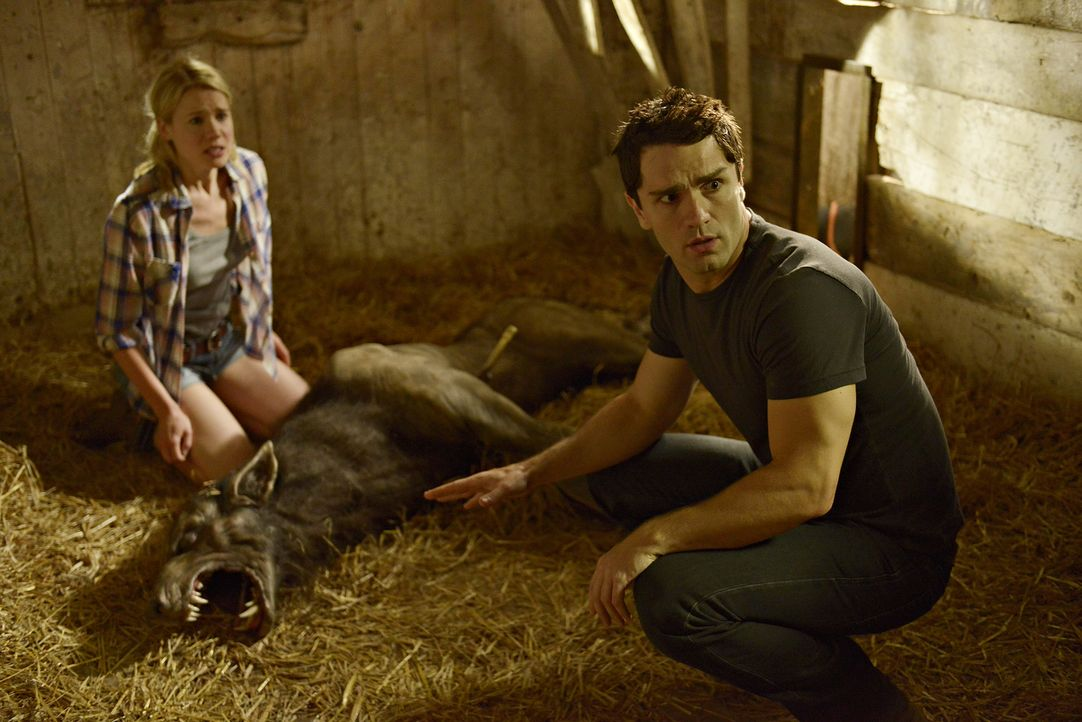 Kann Sally das Leben von Nora (Kristen Hager, l.) und Aidan (Sam Witwer, r.) wieder in einigermaßen normale Bahnen leiten? - Bildquelle: Philippe Bosse 2014 B.H. 4 Productions (Muse) Inc. ALL RIGHTS RESERVED.