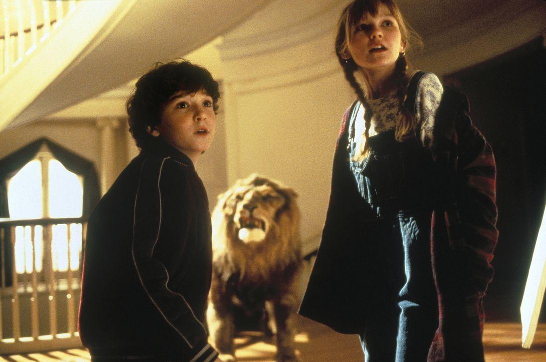 Peter (Bradley Pierce, l.) und Judy (Kirsten Dunst, r.) haben das magische Brettspiel wieder zum Leben erweckt - leider auch einen leibhaftigen Löwe... - Bildquelle: COLUMBIA TRISTAR INTERNATIONAL TELEVISION
