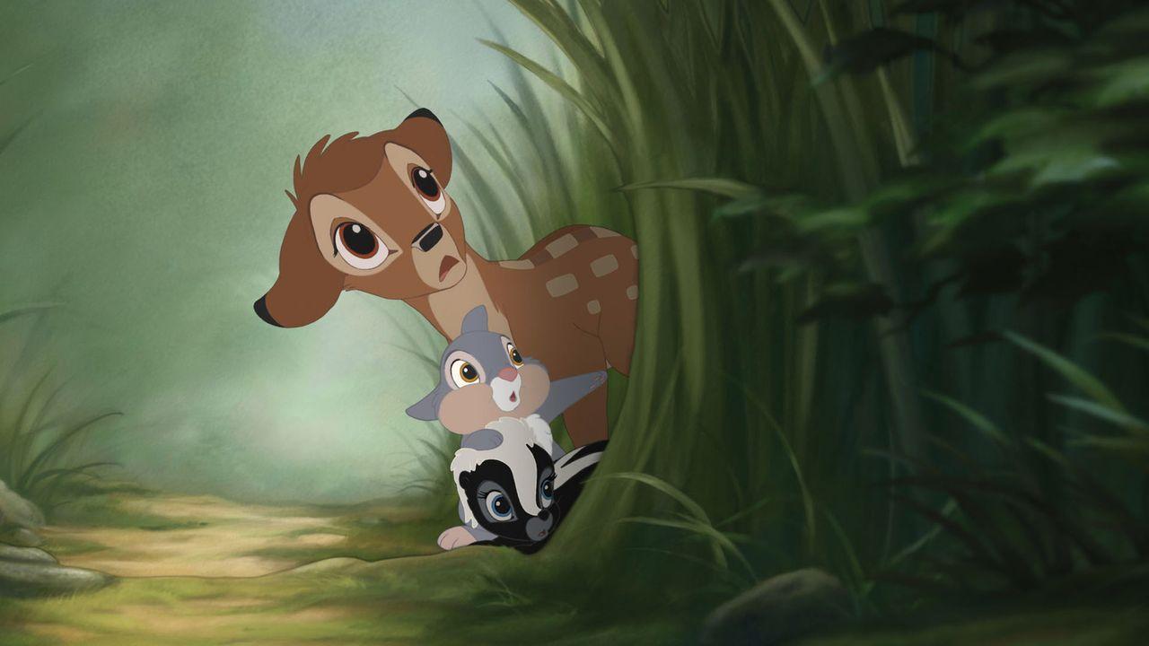 Nach dem Tod seiner Mutter wächst Bambi (oben) unter den Fittichen seines stolzen Vaters heran und hat dabei keinen leichten Stand. Doch mit Hilfe... - Bildquelle: Disney  All rights reserved