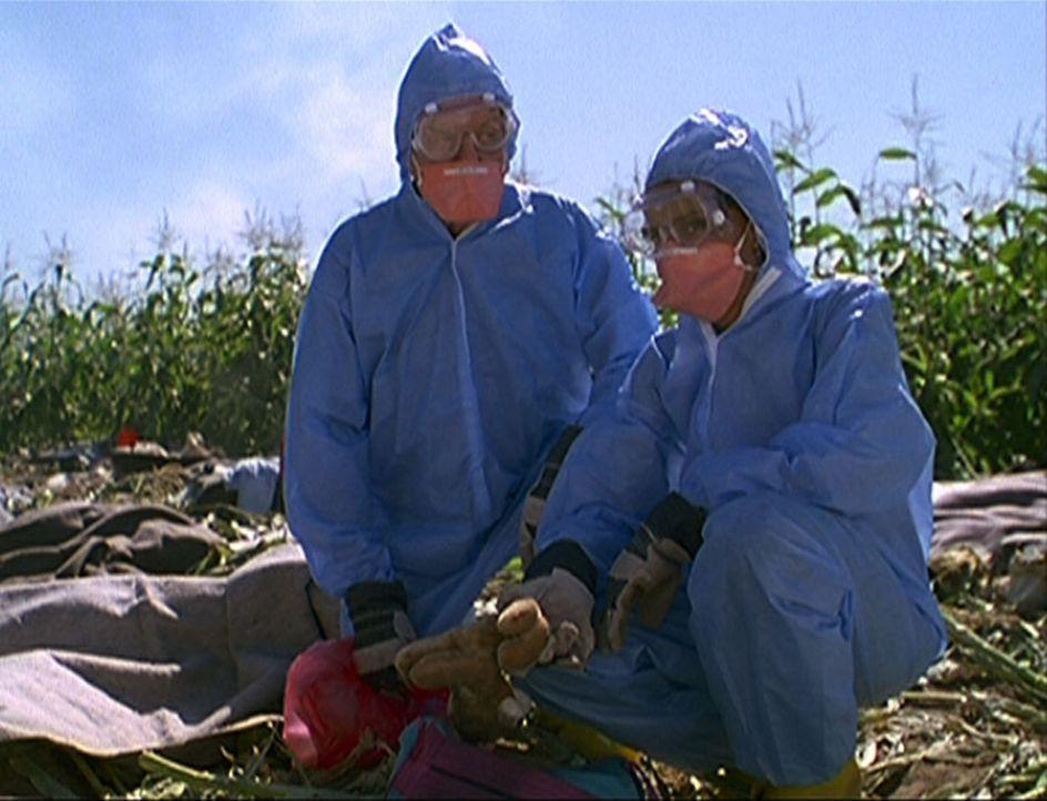 Amanda (Victoria Rowell, r.) und Mark (Dick Van Dyke, l.) knien entsetzt inmitten der Trümmer, die von dem abgestürzten Jumbo noch übrig sind. - Bildquelle: Viacom