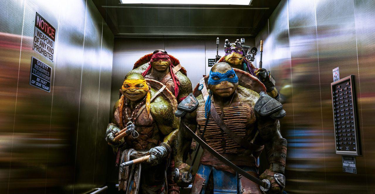 Teenage-Mutant-Ninja-Turtles-1-Paramount - Bildquelle: Paramount Pictures Corporation