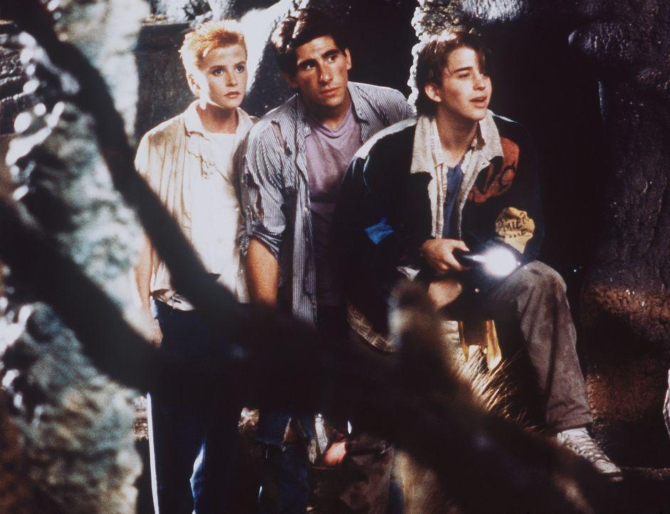 Gebannt betrachten Crystina (Nicola Cowper, l.), Bryan (Paul Carafotes, M.) und sein Bruder Richard (Ilan Mitchell-Smith, r.) die seltsamen Bewohner...