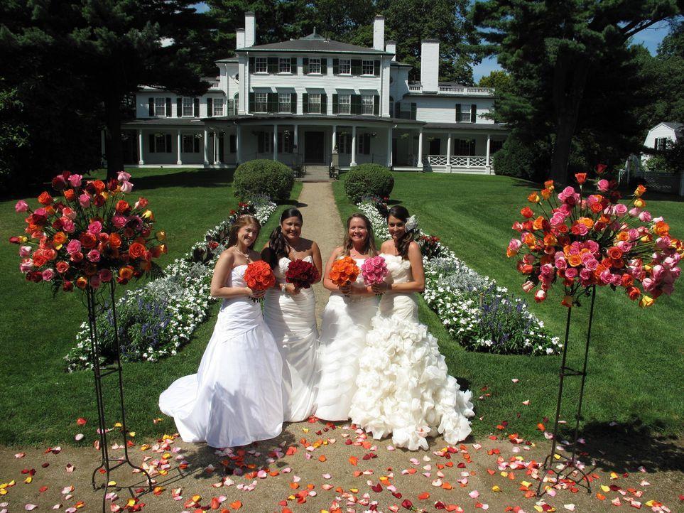 Noch sind alle vier Bräute zuversichtlich: Jennifer (l.), Lydia (2.v.l.), Deanna (2.v.r.) und Aimee (r.) ... - Bildquelle: Richard Vagg DCL