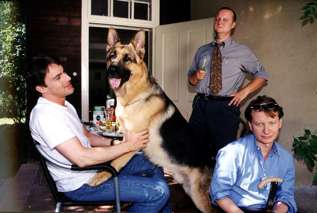 Rex, Brandtner (Gedeon Burkhard, l.), Böck (Heinz Weixelbraun, r.) und Kunz (Martin Weinek, M.) diskutieren ihren neuen Fall. - Bildquelle: Ali Schafler Sat.1