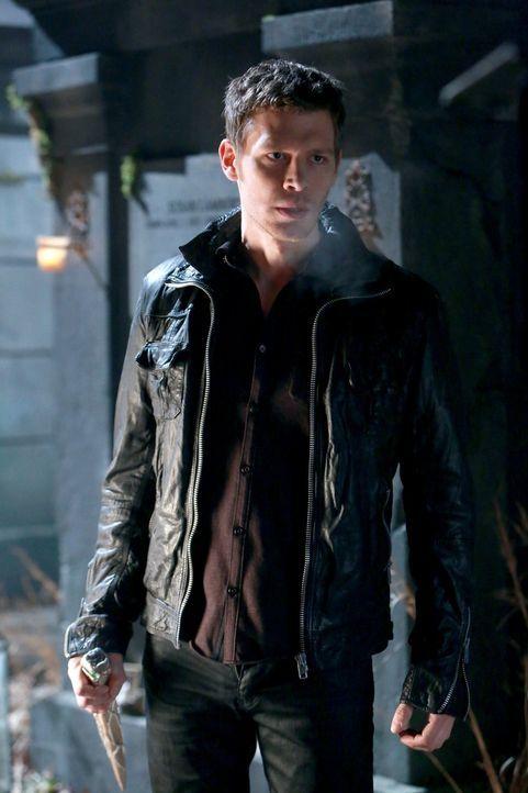 Die Wahrheit über seine Schwester bringt Klaus (Joseph Morgan) vollkommen aus der Fassung, und nur ihr Tod scheint ihn wieder beruhigen zu können ..... - Bildquelle: Warner Bros. Television
