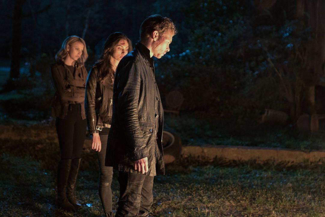 Noch ahnen Freya (Riley Voelkel, l.), Hayley (Phoebe Tonkin, M.) und Klaus (Joseph Morgan, r.) nicht, welche Folgen ihr Schlag gegen Lucien und die... - Bildquelle: Warner Bros. Entertainment, Inc.