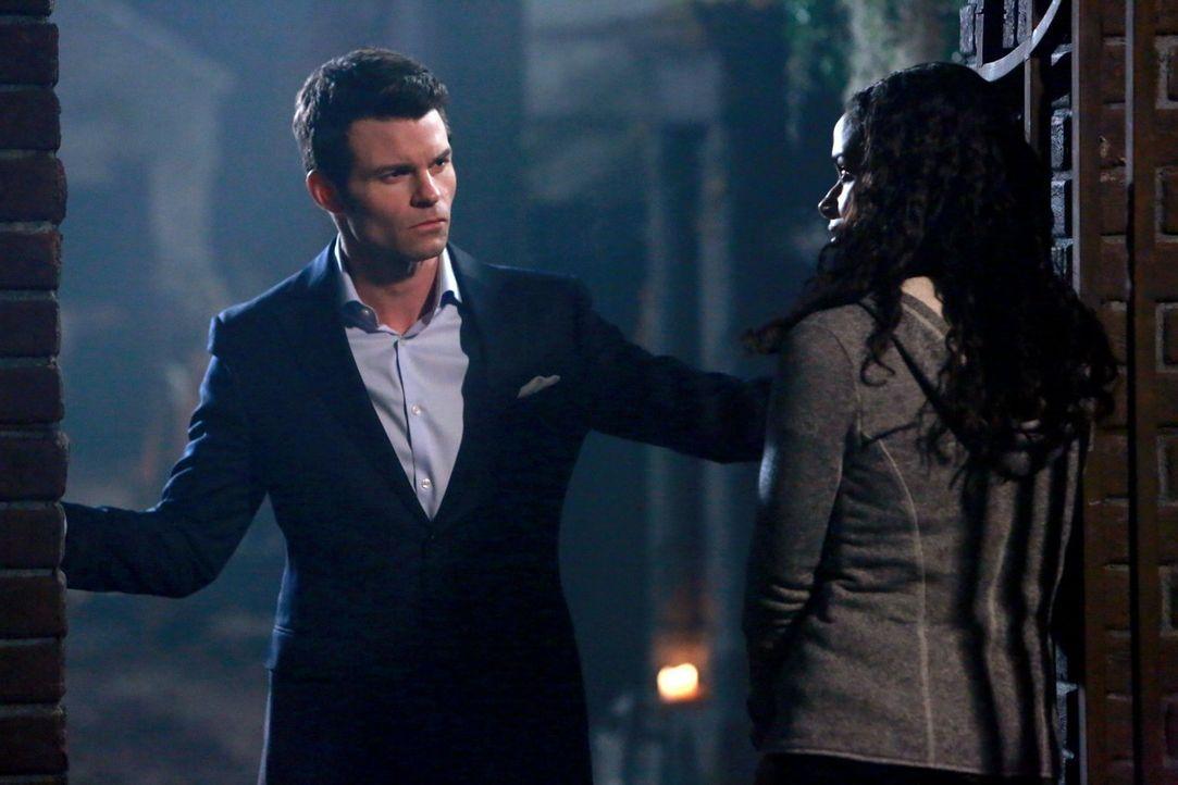 Nach dem, was Celeste (Shannon Kane, r.) seiner Familie angetan hat, will Elijah (Daniel Gillies, l.) ihr nicht mehr vertrauen. Selbst Hayley zulieb... - Bildquelle: Warner Bros. Television