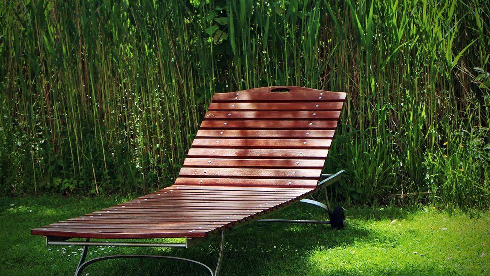Sonnenliege holz selber bauen  Gartenliege selber bauen oder kaufen - SAT.1 Ratgeber