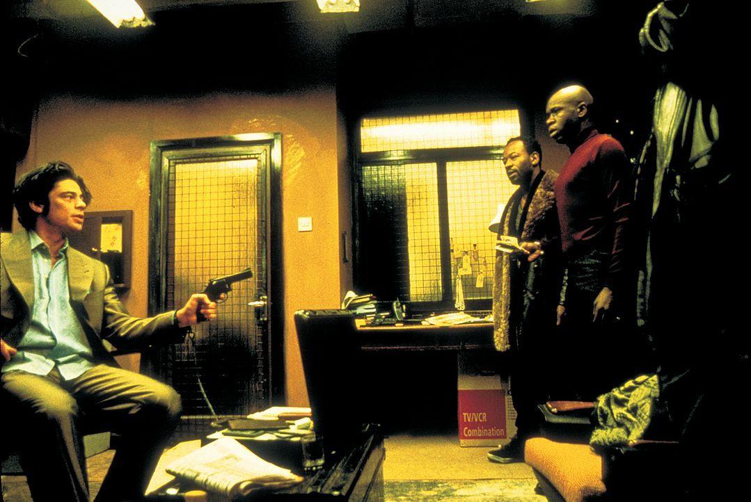 Immer wieder gelingt es Franky Four Fingers (Benicio Del Toro, l.), den vertrottelten Möchtegern-Gangstern Sol (Lennie James, M.) und Vincent (Robbi... - Bildquelle: 2003 Sony Pictures Television International. All Rights Reserved.