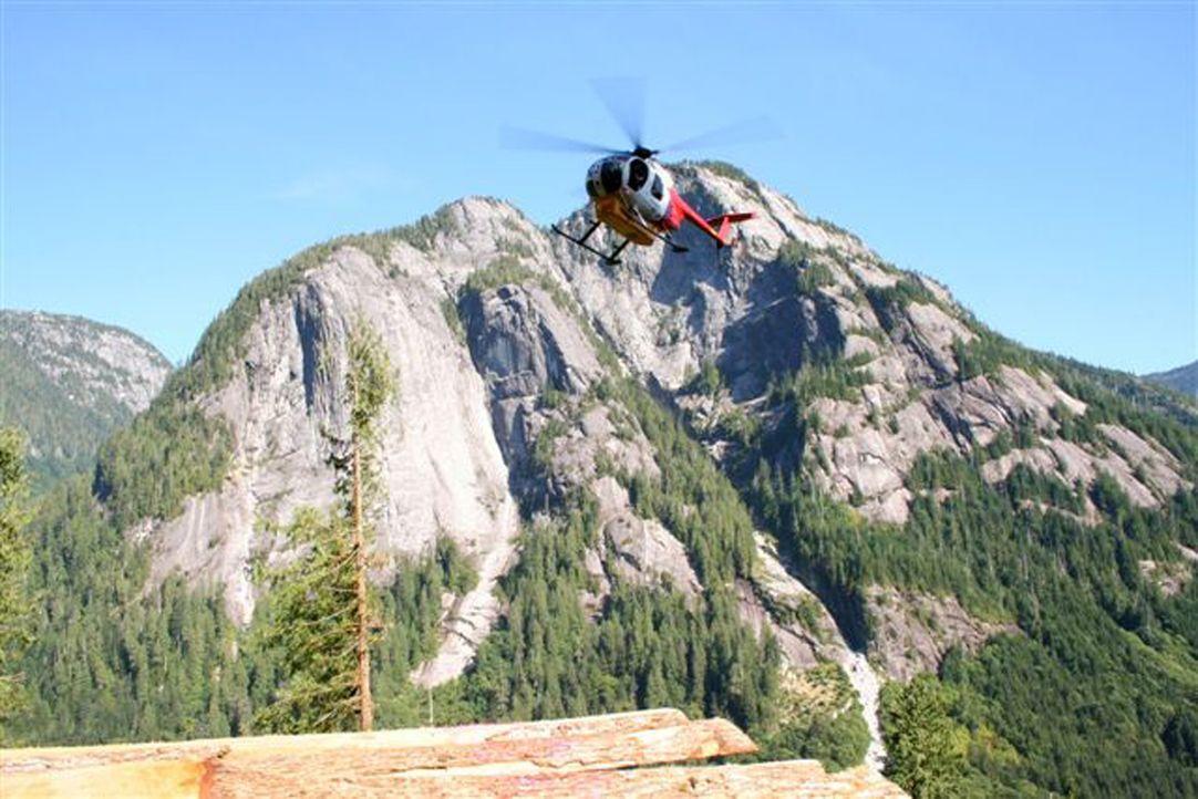 Die Heli-Loggers - eine Truppe tollkühner Holzfäller, mit dem gefährlichsten Job der Welt. - Bildquelle: kabel eins