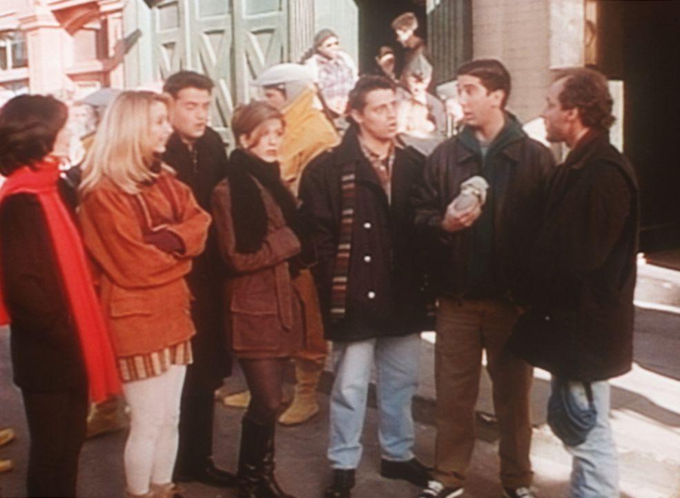 Marcel, Ross' (David Schwimmer, 2.v.r.) ehemaliger Hausaffe, hat Filmkarriere gemacht und nun besuchen die Freunde ihn am Drehort. - Bildquelle: TM+  2000 WARNER BROS.
