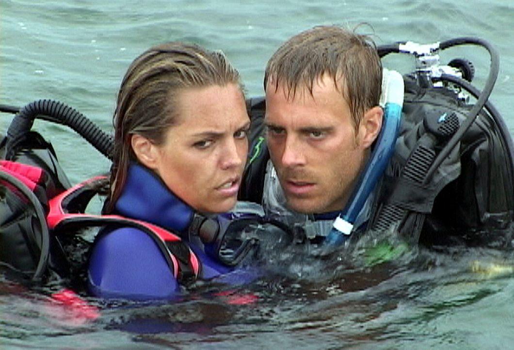 Als Susan (Blanchard Ryan, l.) und Daniel (Daniel Travis, r.) erkennen, dass die Ausflugsgesellschaft sie vergessen hat, bricht Panik aus ... - Bildquelle: 2004 Lions Gate Films. All Rights Reserved.