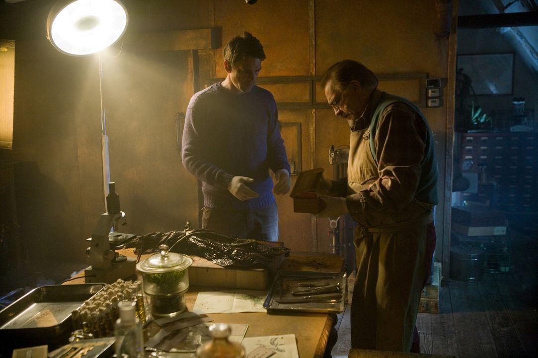 In einem gnadenlosen Wettlauf mit der Zeit versuchen Vater (Brian Cox, r.) und Sohn Masen (Dougray Scott, l.) eine Möglichkeit zu finden, die Triff... - Bildquelle: Triffids Production Limited and Triffids (Canada) Productions Inc. 2009