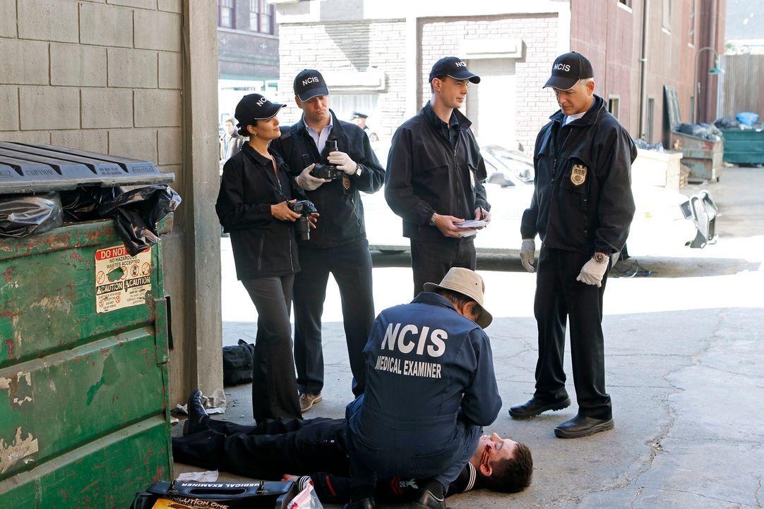 Untersuchen einen neuen Mordfall: Ziva (Cote de Pablo, l.), Tony (Michael Weatherly, 2.v.l.), McGee (Sean Murray, 2.v.r.), Gibbs (Mark Harmon, r.) u... - Bildquelle: 2012 CBS Broadcasting Inc. All Rights Reserved.