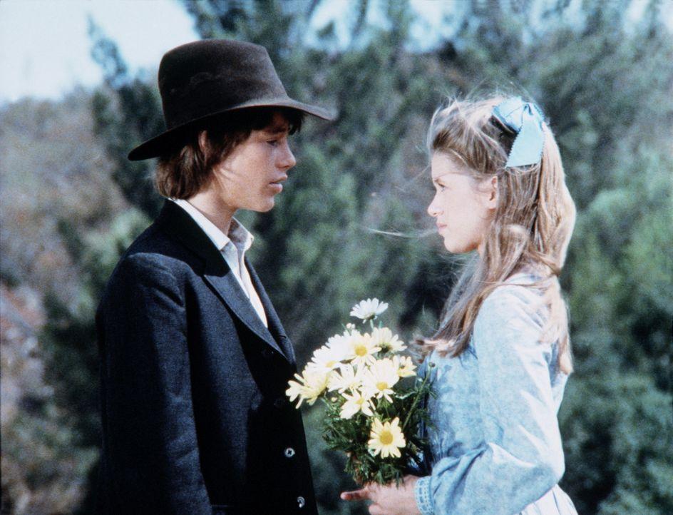 Randall Page (Ronnie Scribner, l.) und Elizabeth Stark (Tammy Laureen, r.) treffen sich heimlich, da Elizabeths Vater gegen ihre Freundschaft ist. - Bildquelle: Worldvision
