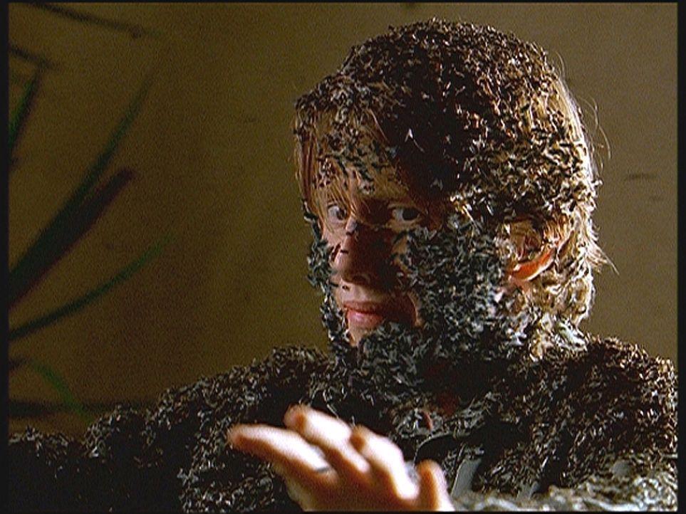Nachdem Dylan (Hank Harris) festgestellt hat, dass seine Mutter, genau wie er selbst, eine Mischung aus Mensch und Insekt ist, fliehen beide aus ein... - Bildquelle: TM +   Twentieth Century Fox Film Corporation. All Rights Reserved.