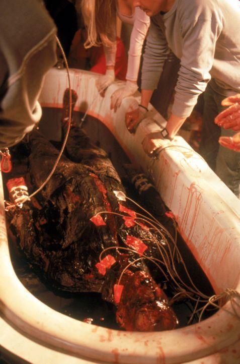 """In einem """"Blutbad"""", versuchen die Studenten den leblosen Körper Draculas wieder zum Leben zu erwecken! - Bildquelle: Neo Art & Logic"""