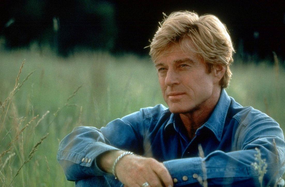 Zurückgezogen lebt der wortkarge Tom Booker (Robert Redford) in Montana, wo er auf der Farm seines Bruders Rinder züchtet. - Bildquelle: Touchstone Pictures