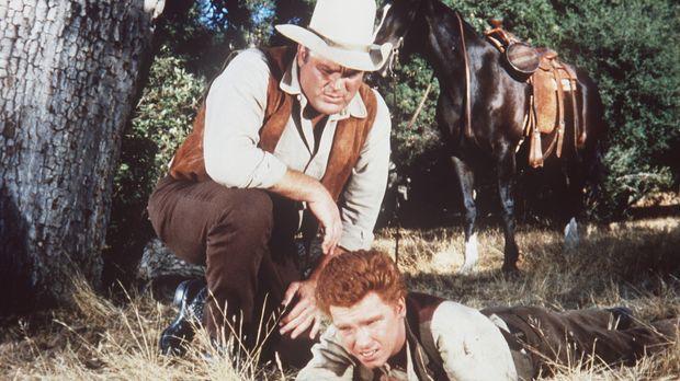 Der tierliebe Skeeter (Eddie Hodges, r.) verletzt sich, als er einen Fuchs au...