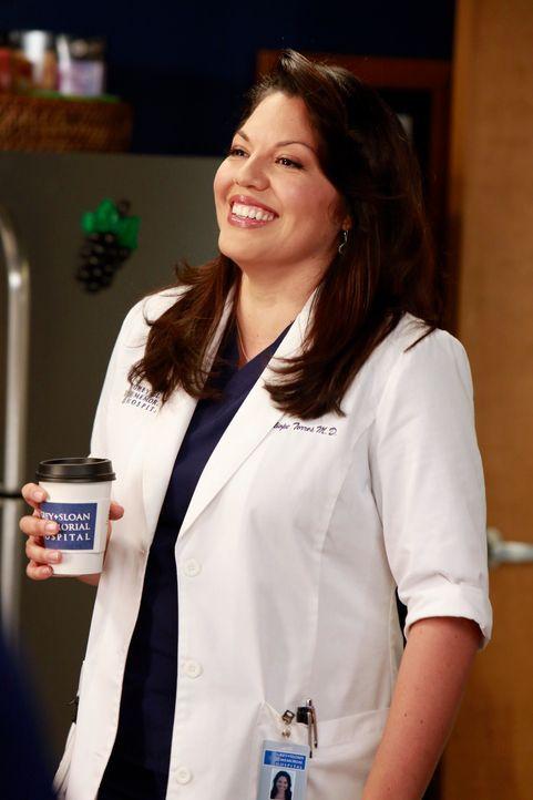 Callie (Sara Ramirez) möchte ein Knorpel-Regenationsprogramm finanziert haben und Jackson erklärt ihr, dass auch sie den offiziellen Weg gehen muss.... - Bildquelle: ABC Studios