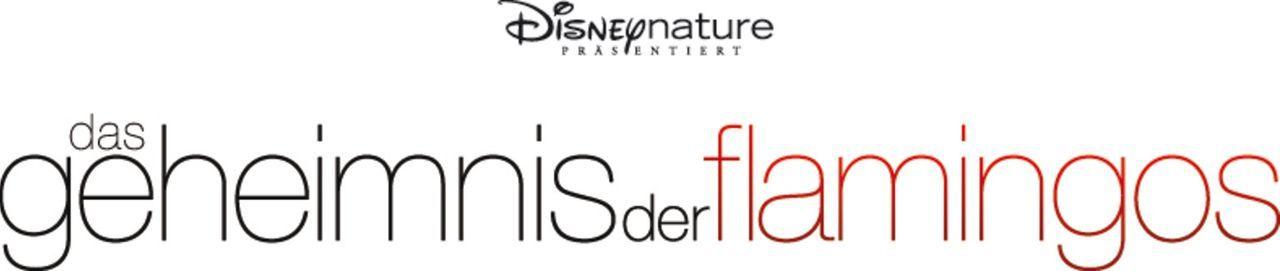 DAS GEHEIMNIS DER FLAMINGOS - Logo - Bildquelle: Disney Enterprises, Inc.  All rights reserved.