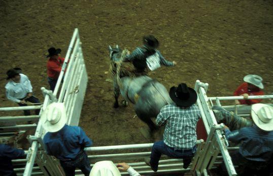 Inside USA - Volkssport Nr.1 in Texas: Rodeoreiten - Bildquelle: kabel eins
